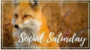 Super Sociable Saturdays are Back!